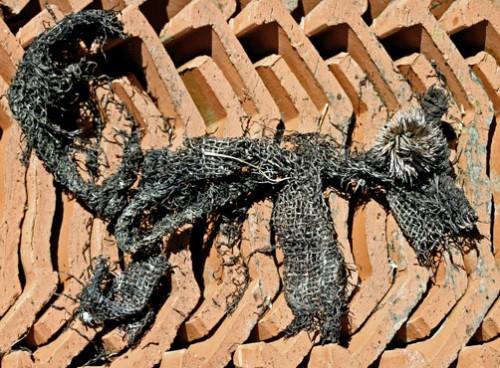 Le cjien ou le grand Méchant Loup,assemblage éphémère de débris trouvés, Bruno Montpied, 2008.jpg