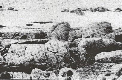 Zizi de pépé, plage de Porsmeur,L'Art Immédiat n°2,1995-.jpg