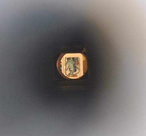Le dresseur d'auréole de BM au bout du périscope (à 5 m)(2).jpg