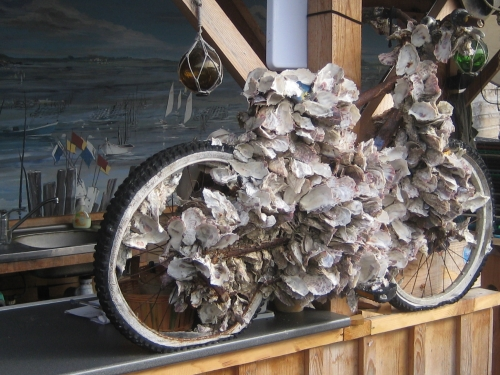 Vélo à huîtres.jpg