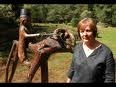 Alexis Le Breton, sa sculpture de Jacob sur son buffle, avec Mme Pasco au premier plan, photo Le Télégramme, 2009 .jpg