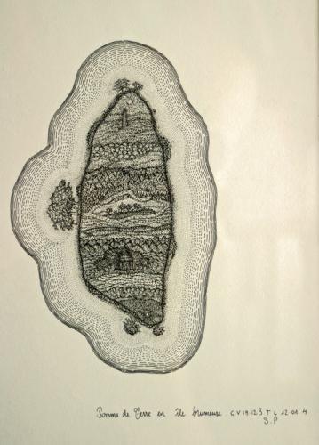 Serge Paillard, Pomme de terre en île brumeuse,2004, (dessin original), coll.privée Paris, ph Bruno Montpied.jpg