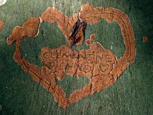 brassaï,dubuffet,graffiti historiques,graffiti gravés,inscriptions sur les murs,écrits populaires,art enfantin,galerie kirsten grave