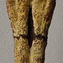 Anonyme, statuette chamanique (Birmanie), détail de la tache-poignard.jpg