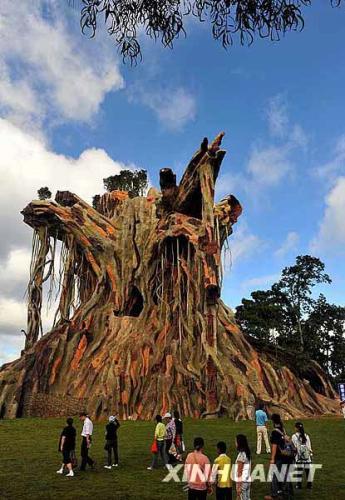château d'arbre ds le Yunnan.jpg