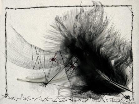 Ruzena,-dessin-et-plume-sur.jpg