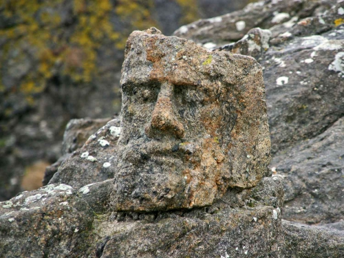 Le-barbu-pose-sur-le-roc-(2.jpg