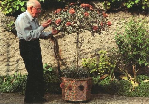 Robert Mauquest et son rosier en timbres (2).jpg