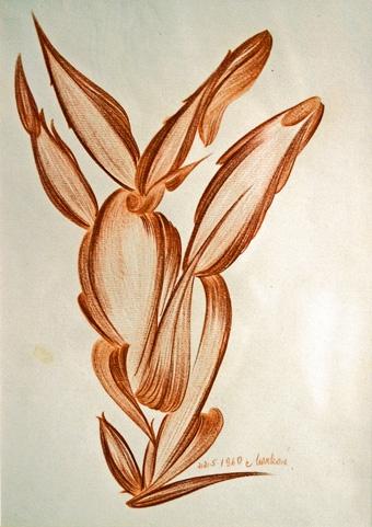 Cecilie-Markova,-dessin-aux.jpg