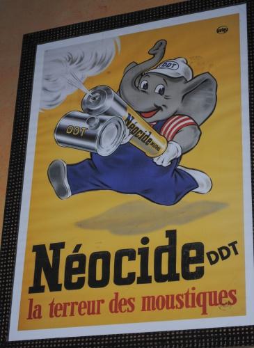 cobra,publicité murale,coïncidences,hasard objectif