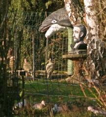 Buste d'homme barbu, orque dans les arbres, Sarthe, ph.Bruno Montpied, 2009.jpg