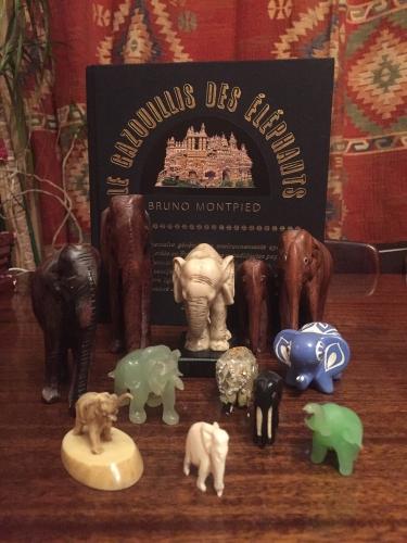 librairie l'ecume des pages,le gazouillis des éléphants,environnements populaires spontanés,collection bruno montpied,emile taugourdeau,joseph donadello,françois llopis,bernard jugie,paul waguet