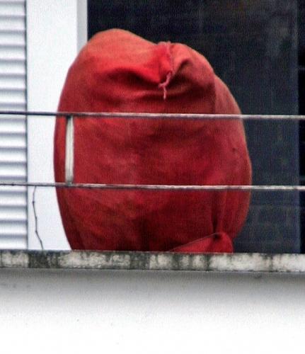 La chose rouge agrandie, janv12.jpg