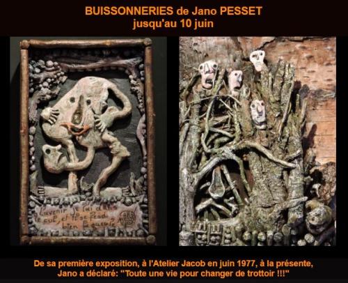 Buissonneries de Jano Pesset.JPG