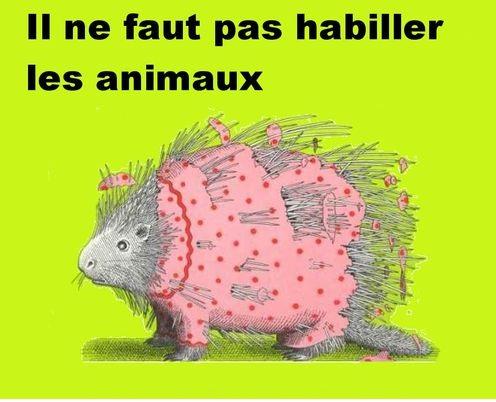 il_ne_faut_pas_habiller les animaux. 2jpg.jpg