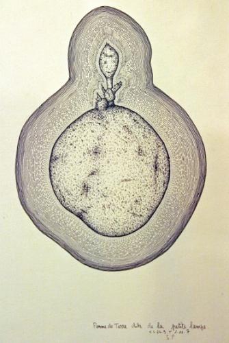 art naïf,art singulier,jean-louis cerisier,cns53,mayenne à l'oeuvre,musée national des beaux-arts de minsk,douanier rousseau,henri trouillard,jules lefranc