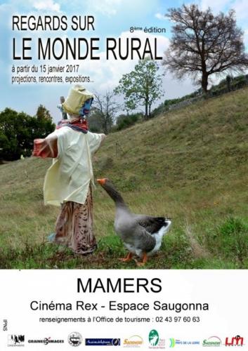 denise et maurice dresseurs d'épouvantails,denise chalvetn remy ricordeau,mamers,festival regards sur le monde rural