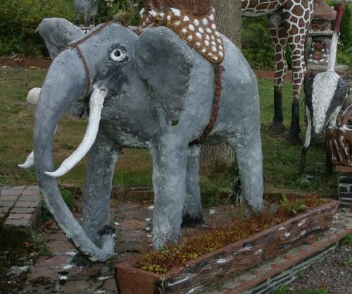 Elephant-Hardy.jpg