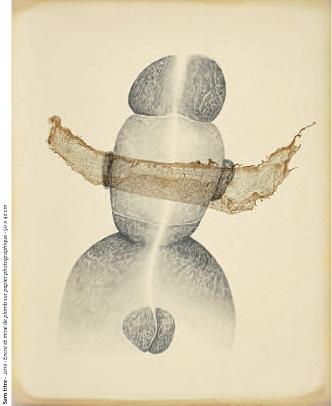 Gilles Manero,dessin sans titre, Musée de la Création Franche, expo 2010-2011.jpg