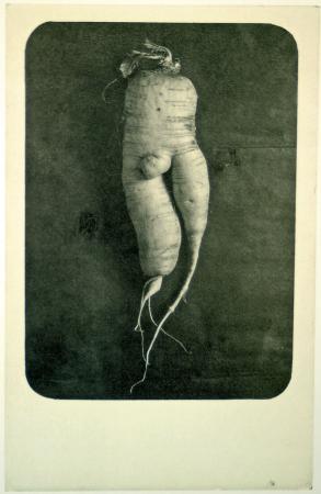 carte italienne, vers 1903, expo la Photographie Timbrée, Jeu de Paume,2008.jpg