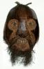 noix de coco sculptées,philippe maestrati,coconut,cococephalophily,bagnards
