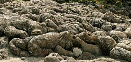 Vachet-Guerre-des-Boers-(dé.jpg